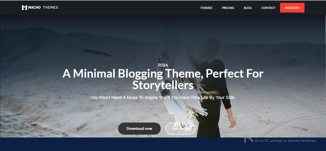 Riba Lite free wordpress themes 2019
